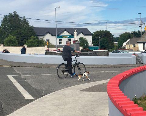 Man on bicycle walking dog on lead, Ennis town